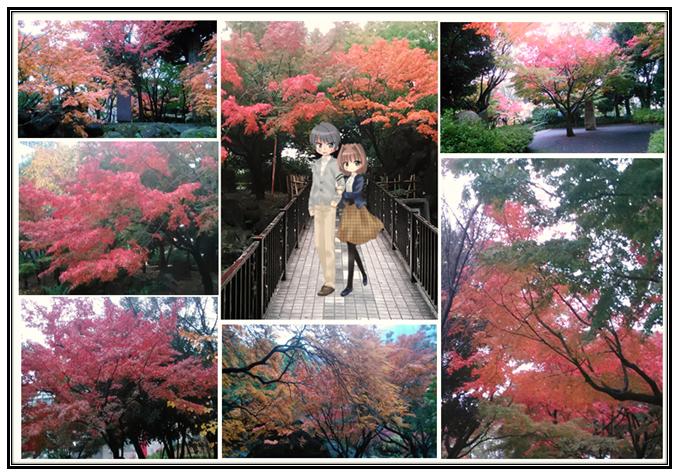 まりあの休日(もうすぐ冬、最後の秋を感じてきました)①