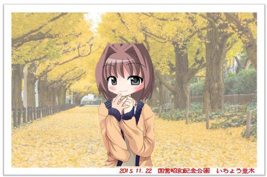 まりあの休日(東京の色づく落葉を訪ねて)
