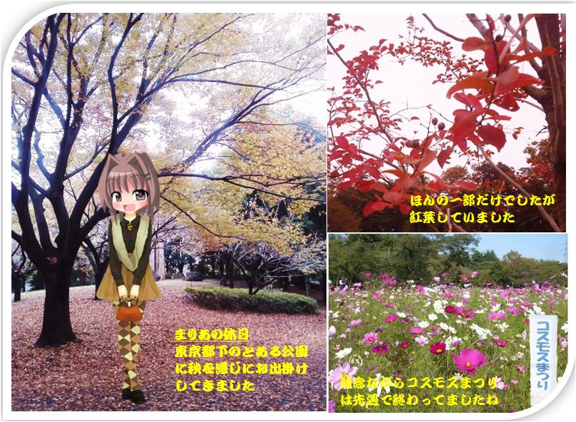まりあの休日(秋桜まつり)